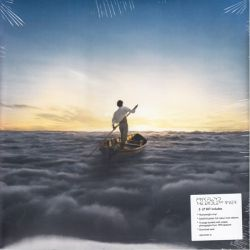 PINK FLOYD - THE ENDLESS RIVER (2LP+BOOKLET+MP3 DOWNLOAD) - HEAVYWEIGHT 200 GRAM HIGH QUALITY VINYL PRESSING - WYDANIE AMERYKAŃS