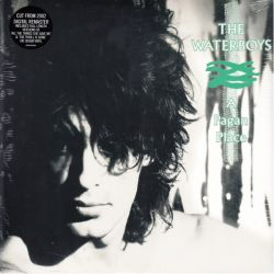WATERBOYS, THE - A PAGAN PLACE (1 LP) - 180 GRAM PRESSING