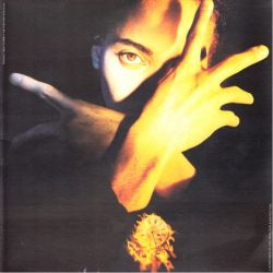 D'ARBY, TERENCE TRENT - NEITHER FISH NOR FLESH. A SOUND OF LOVE, FAITH, HOPE & DESTRUCTION (1 LP)