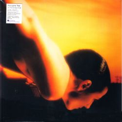 PORCUPINE TREE - ON THE SUNDAY OF LIFE (2 LP) - 180 GRAM PRESSING