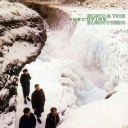 Echo And The Bunnymen - PORCUPINE (Vinyl LP)