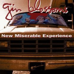 Gin Blossoms - New Miserable Experience (Vinyl LP)