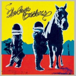The Avett Brothers - True Sadness (Vinyl 2LP)
