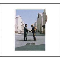 Pink Floyd - Wish You Were Here (180g Vinyl LP)