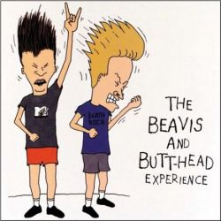 Beavis and Butt-Head Experience - Various Artists (Picture Disc LP)
