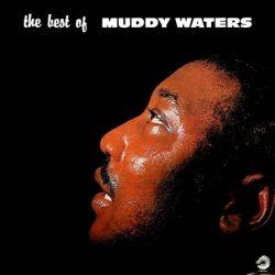 Muddy Waters - The Best of Muddy Waters (Vinyl LP)