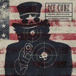 Ice Cube - Death Certificate: 25th Anniversary Edition (180g Vinyl 2LP)