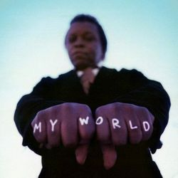 Lee Fields and The Expressions - My World (Vinyl LP)