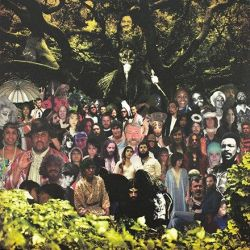 Devendra Banhart - CRIPPLE CROW (Vinyl 2LP)