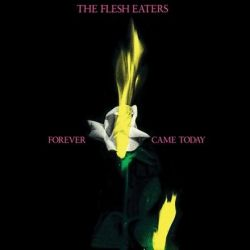 The Flesh Eaters - Forever Came Today (Vinyl LP)