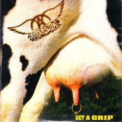 AEROSMITH - GET A GRIP (2 LP + MP3 DOWNLOAD) - BACK TO BLACK EDITION - 180 GRAM PRESSING