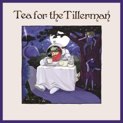 YUSUF [CAT STEVENS] - TEA FOR THE TILLERMAN 2 (1 LP)