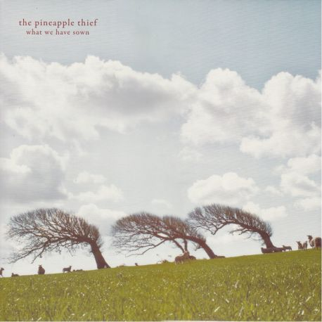 PINEAPPLE THIEF, THE - WHAT WE HAVE SOWN (2 LP)