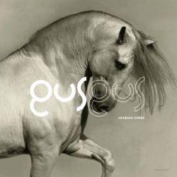 GUS GUS - ARABIAN HORSE (2LP)