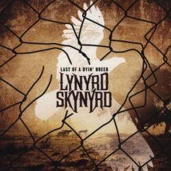 LYNYRD SKYNYRD - LAST OF A DYIN\' BREED (1LP)