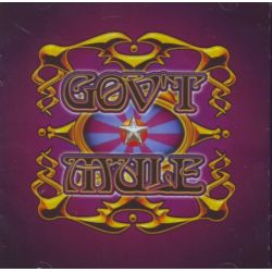 GOV'T MULE - LIVE WITH A LITTLE HELP (2 CD)