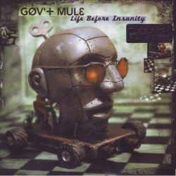 GOV'T MULE - LIFE BEFORE INSANITY (2 LP) - MOV EDITION -180 GRAM PRESSING